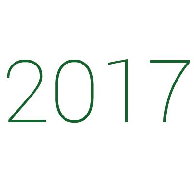 2017 icon2